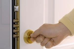 Types-Of-Security-Door-Locks